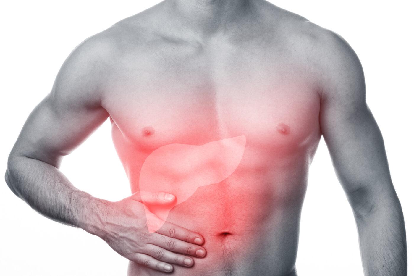 ползи от пробиотиците черен дроб