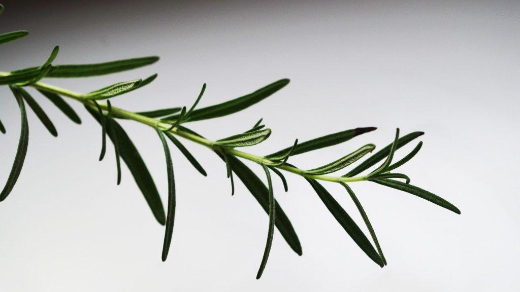 етерични масла за бърз растеж на косата