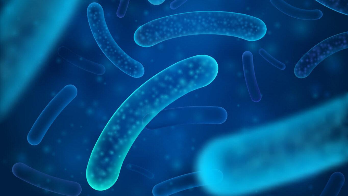 пробиотици атопичен дерматит